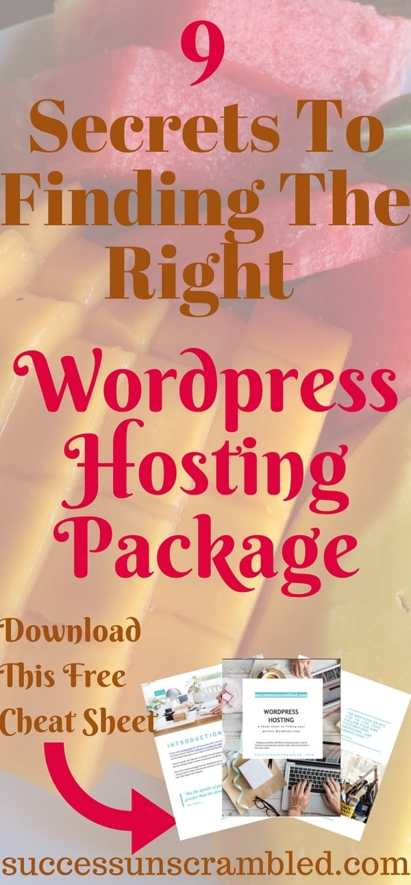 9 Secrets To Finding The Right WordPress Hosting Package-2