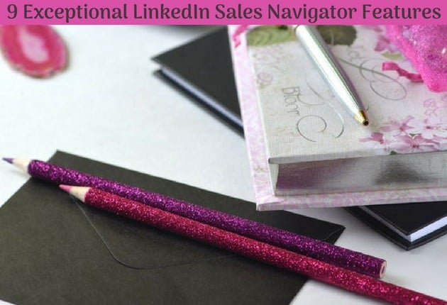 9 Exceptional LinkedIn Sales Navigator Features - blog