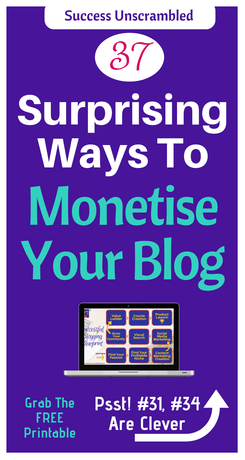 Monetise Your Blog - 800x1500