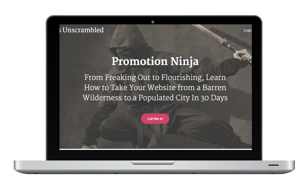 Promotion Ninja on laptop