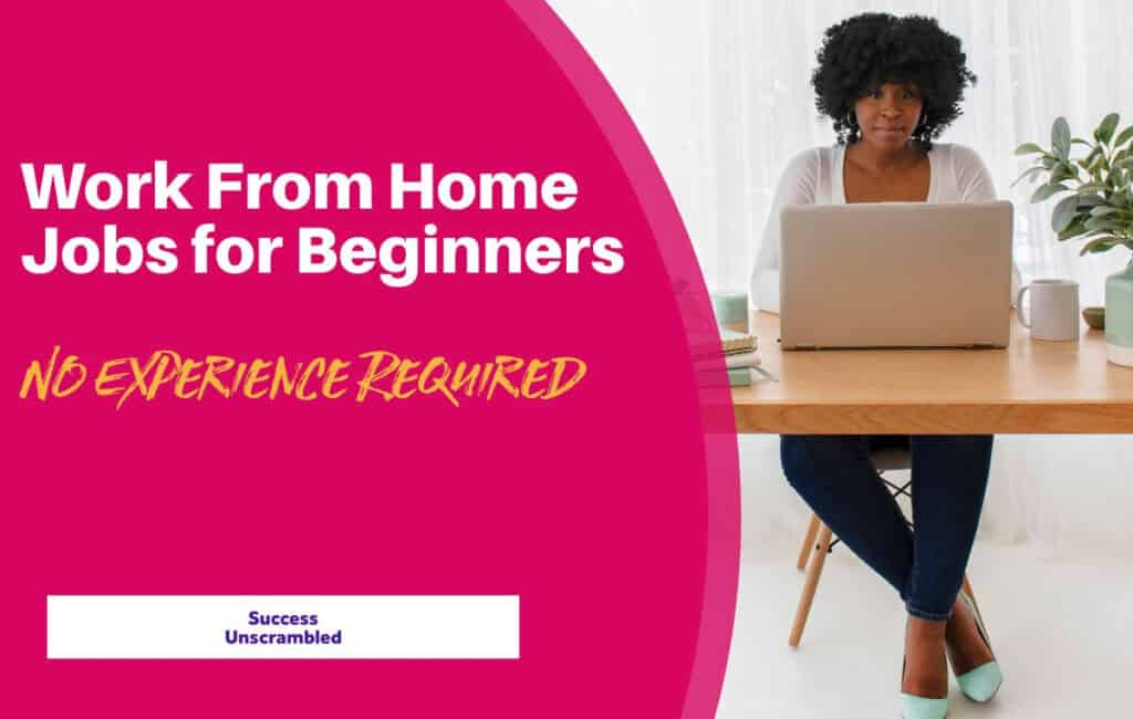 47+ Work From Home Jobs for Beginners - blog post